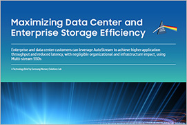 Maximizing Data Center and Enterprise Storage Efficiency