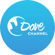 Dove ChanneL 1091