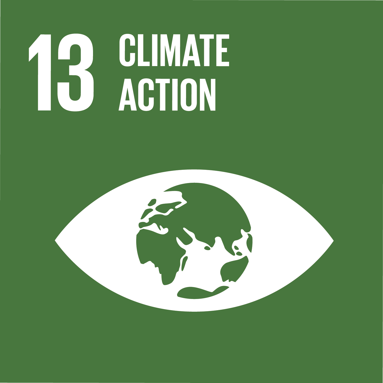 Representative image of SDG climate action